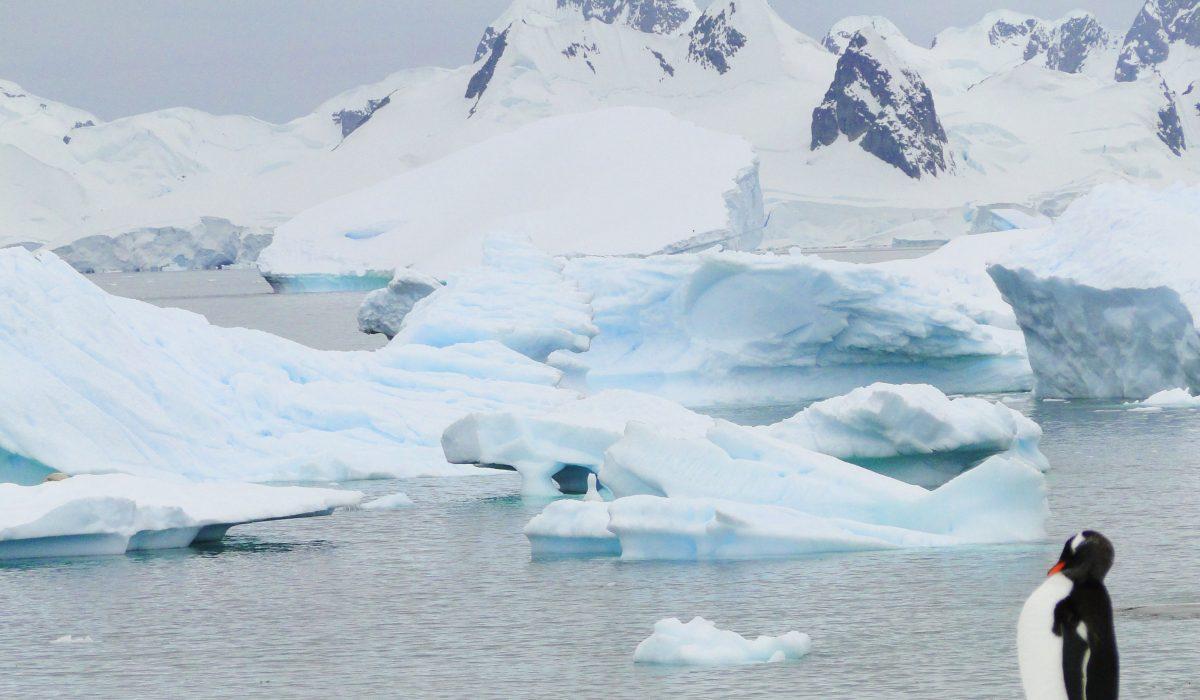 Antarctique-1200×700