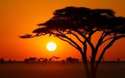 Que voir en Afrique du Sud ? 5 lieux à visiter absolument