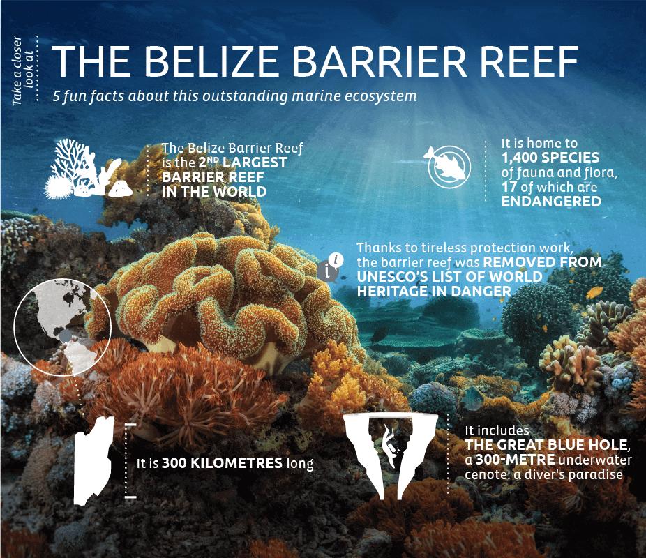 Belize-barriere-corail-EN