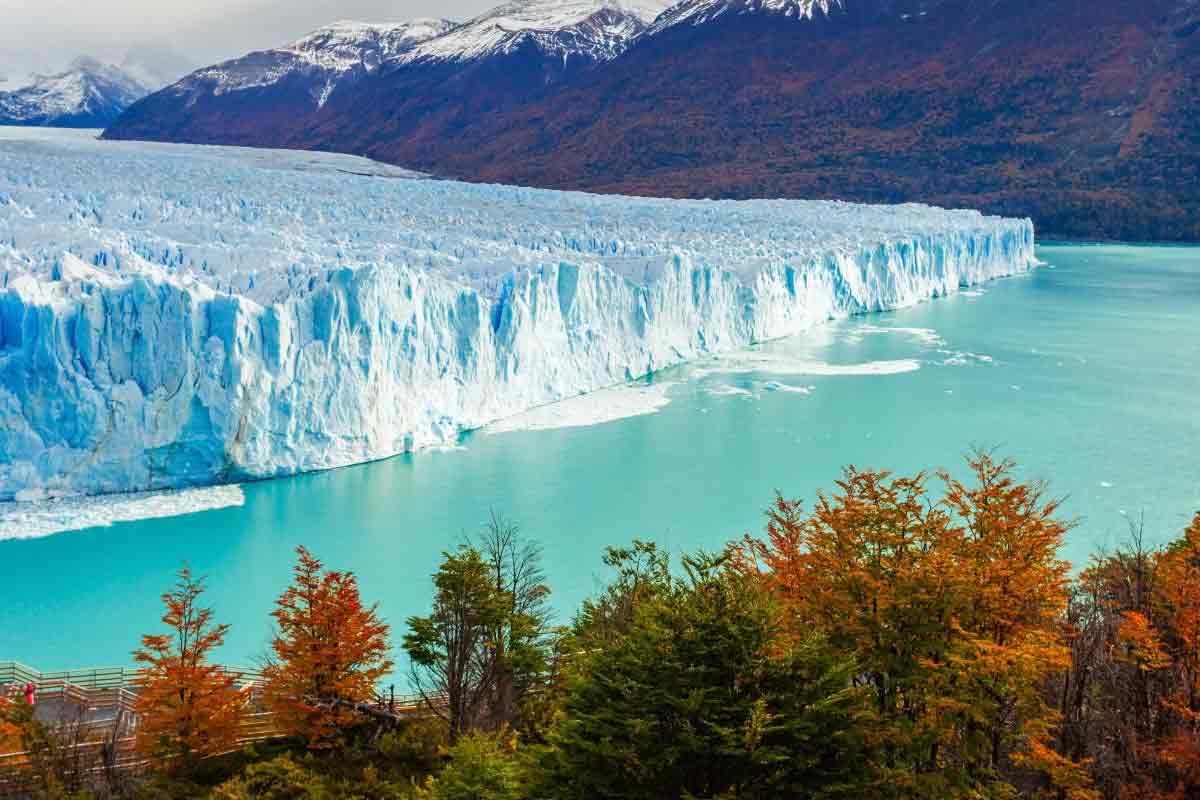 Perito-Moreno-Glacier-panoramique-compressor