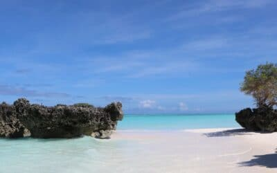 Discover the French Scattered Islands