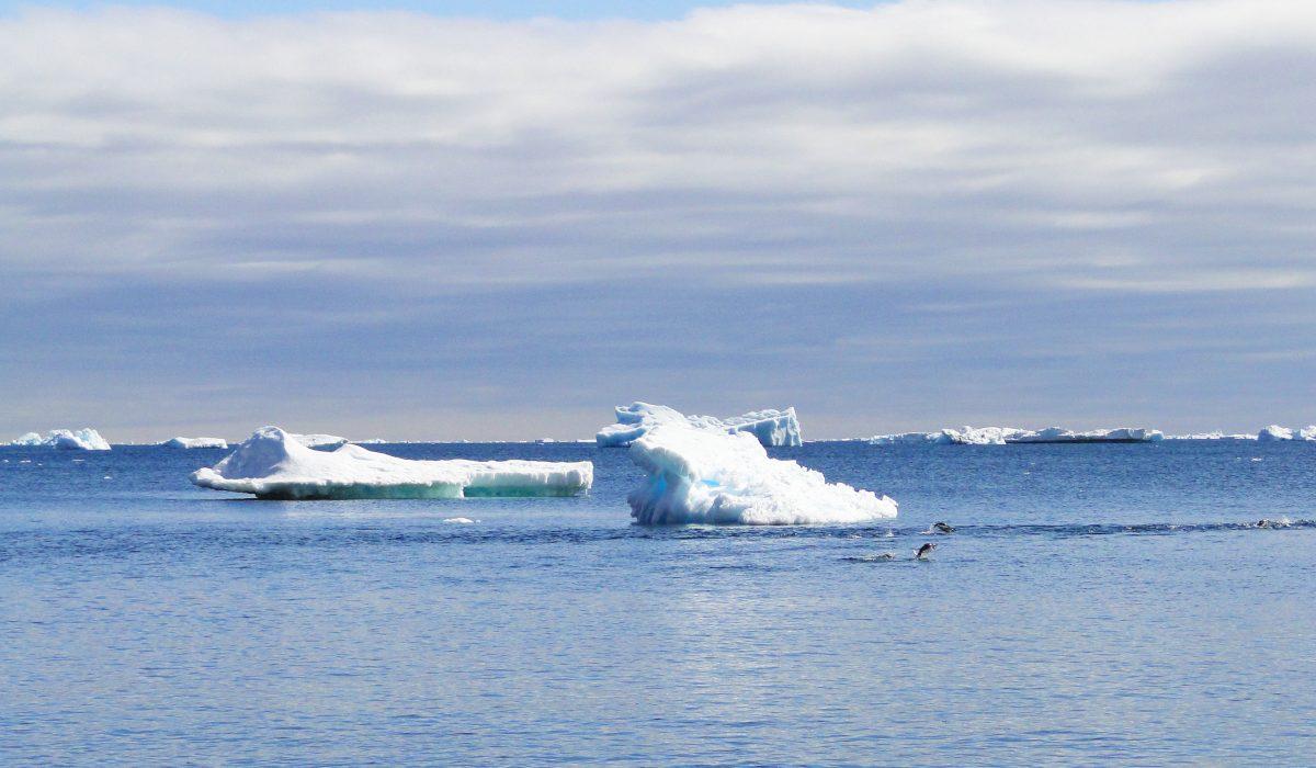 icebergs-1200×700