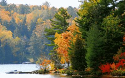 Canada : à la découverte des Grands Lacs, grandioses
