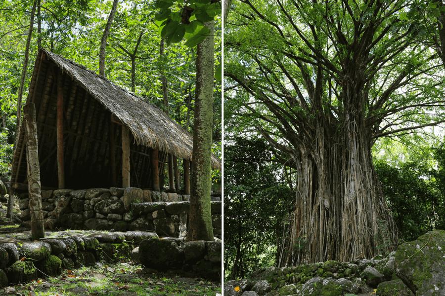 site-archeologique-Kamuihei-1