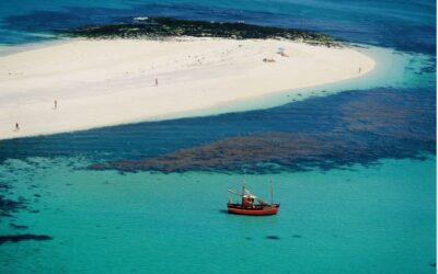 Ploumanac'h et la réserve des Sept-Îles