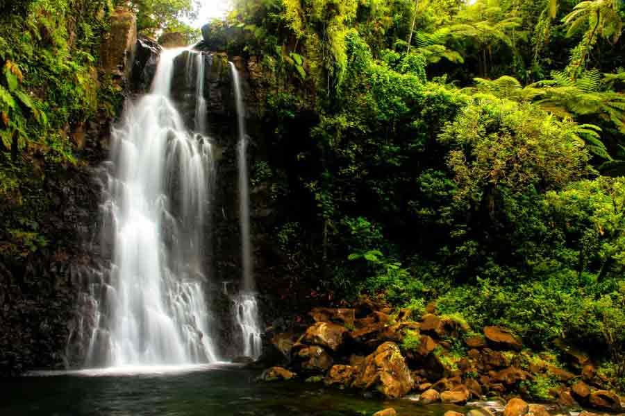 Fidji-Middle-Tavoro-Waterfalls