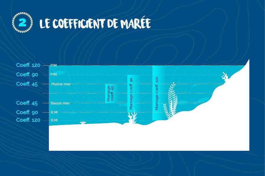 Le-coefficient-de-maree-2019