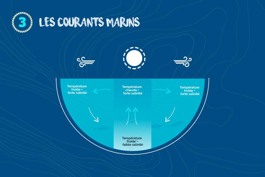 Les-courants-marins