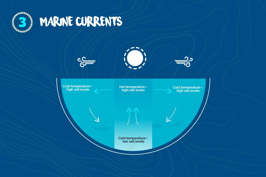 Marine-currents