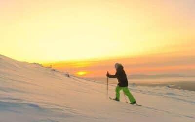 Six expériences immersives en milieu polaire