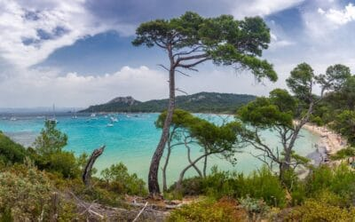 Les îles d'Hyères, c'est aujourd'hui !