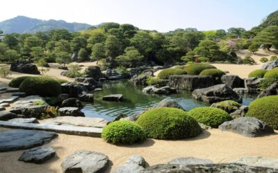 Hide and Reveal – creating mystery in Japanese Gardens