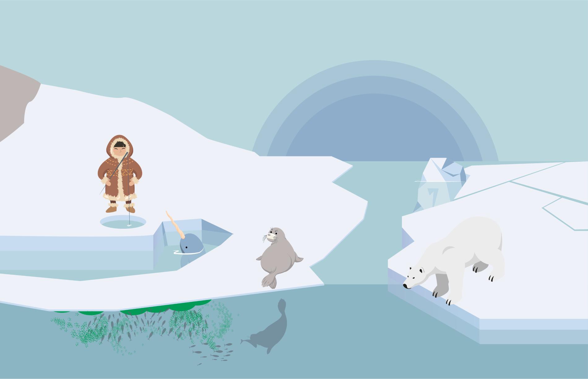 Glaciers, banquise ou iceberg : reconnaître les formations de glace
