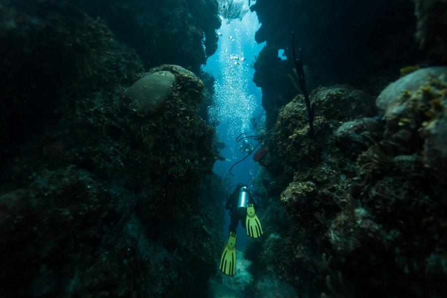 plongeur bleu hole