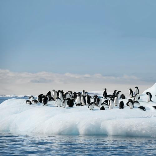 Navire d'exploration polaire se reflétant sur l'eau
